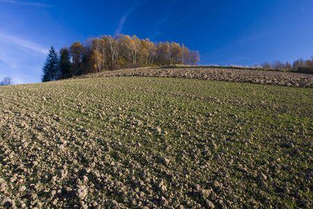 Autumn field landscape in Poland.