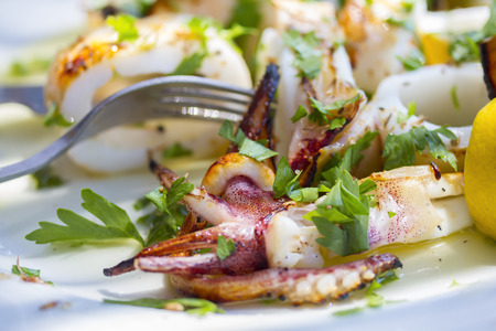 Closeup of grilled squids with vegetables Stock Photo