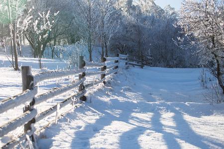 Frozen wooden fence, dolnoslaskie, Poland