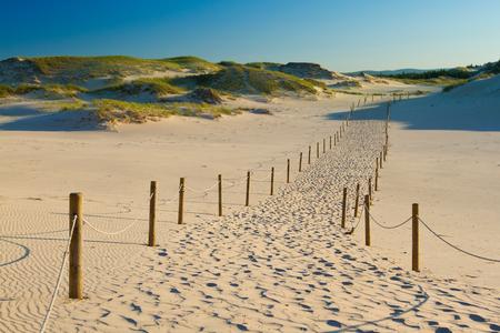 Dunes in Slowinski national park, Poland. Zdjęcie Seryjne