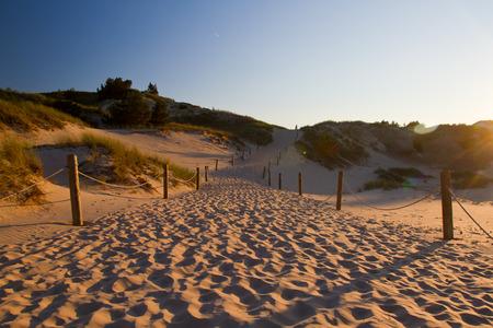 Dunes in slowinski national park, Poland