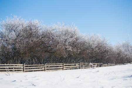 Winter landscape in dolnoslaskie, Poland