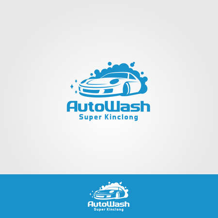 Professional Car Wash Company or Business Logo