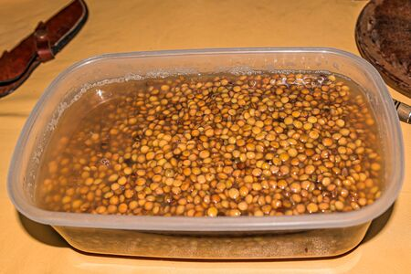 brown lentil, legume, food, vegetarian, protein on water.