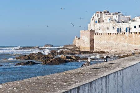 defensive: Defensive walls of Essaouira city along the atlantic ocean coast, Morocco