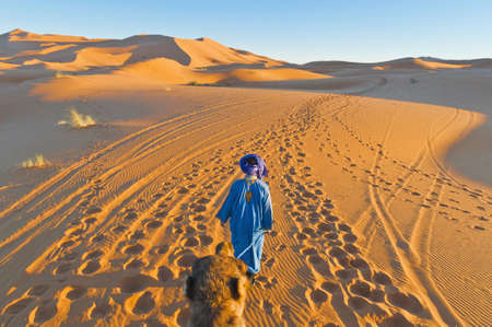 morocco: Berber walking with camel at Erg Chebbi orange dunes, Morocco Stock Photo