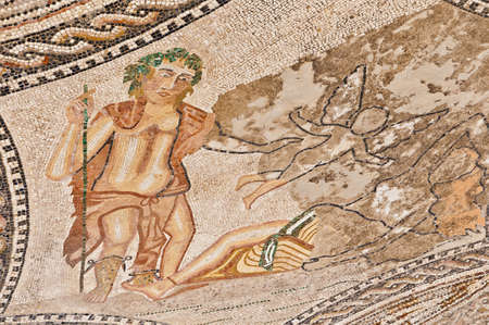 Detailed roman Mosaics at the Columns House at Volubilis, Morocco