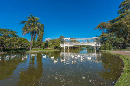 parque: Roundabout on Parque Tres de Febrero, also known as the Bosques de Palermo (Palermo Woods), a 400 hectares urban park located in the neighborhood of Palermo in Buenos Aires, Argentina.