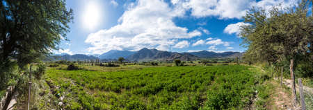 pano: Cachi Adentro Region within Calchaqui Valleys in Salta Province, northern Argentina