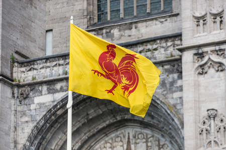 walloon: Flag waving the Walloon coat of arms in Mons, Belgium