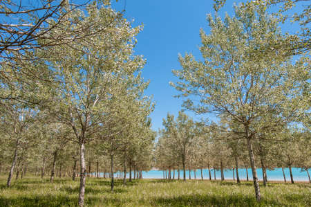 espanya: Mediano reservoir located at Huesca in Aragon Province, Spain Stock Photo