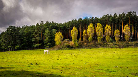 castile leon: Sierra de Gredos, a mountain range in central Spain that spans the province of Avila, Castile Leon. Stock Photo