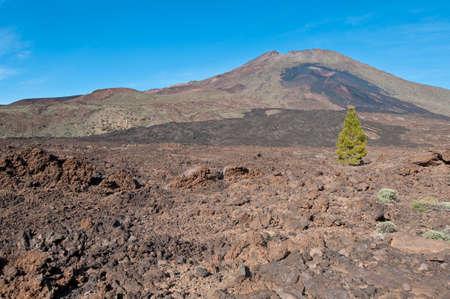 dominant color: Samarra volcanic region near Mount Teide, Tenerife Island