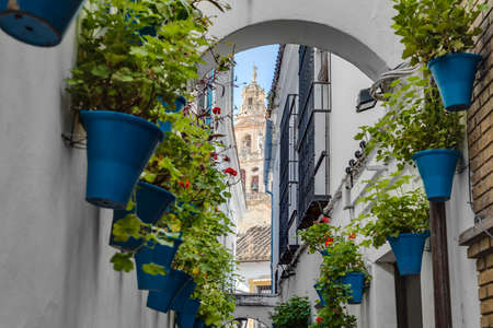 Calleja de las Flores, one of the most popular and tourist streets of Cordoba city near the Great Mosque in Andalusia, Spain.