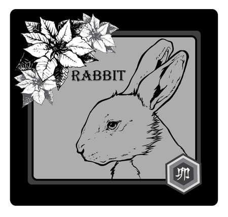 asian bunny: RABBIT