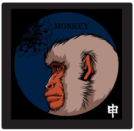 almanac: MONKEY