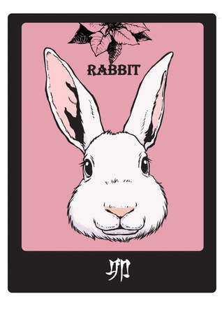 calender icon: RABBIT
