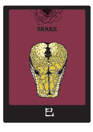 almanac: SNAKE Illustration