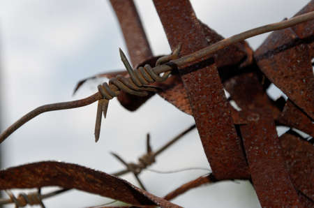 oxidize: rusty barbed wire
