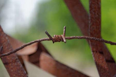 oxidized barbed wire photo