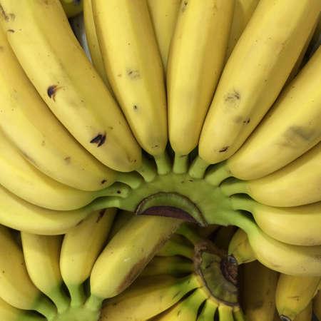 unblemished: Fresh bananas background Stock Photo