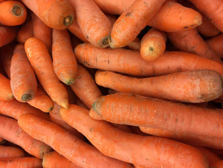 Heap of carrot as background