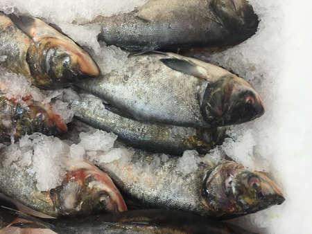 produits alimentaires: Le poisson frais sur la glace dans le marché