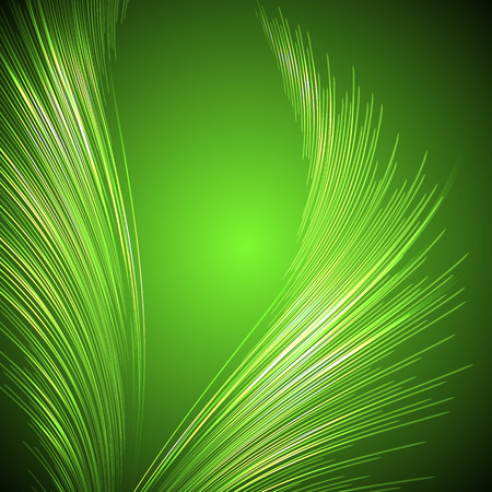 green lines: Palm leaves and vector illustration