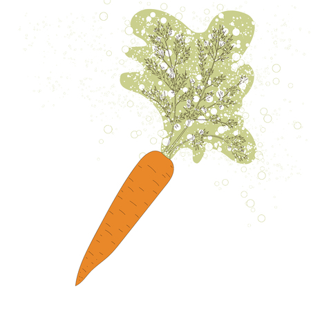 Vector illustration of a carrot with abstract leaf design. Banner, print, web design. Hand draw style. Vector. 일러스트