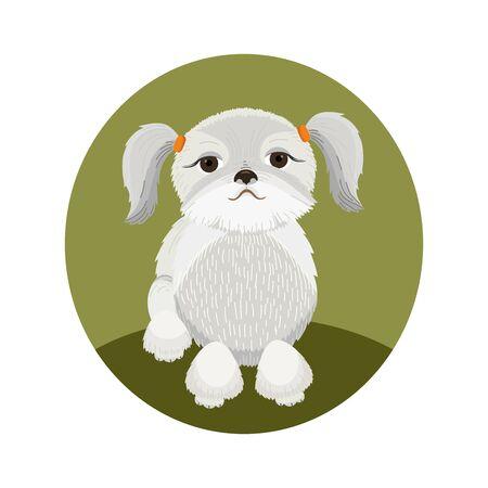 Shih Tzu Dog Illustration Ilustração
