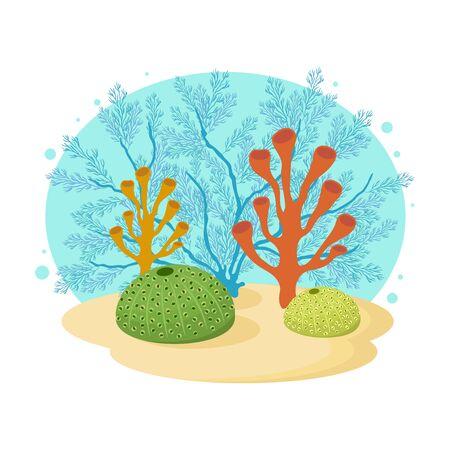 Underwater cartoon clipart with corals on white background. Vector hand drawn illustration of under the sea scene. 版權商用圖片 - 147828311