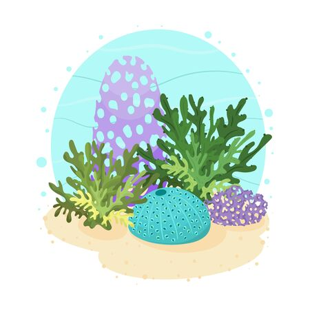 Underwater cartoon clipart with corals and algae on white background. Vector hand drawn illustration of under the sea scene.