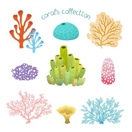 Collection with colorful cartoon corals, isolated on white background. Vector hand drawn illustration with under the sea scene set. Ilustración de vector