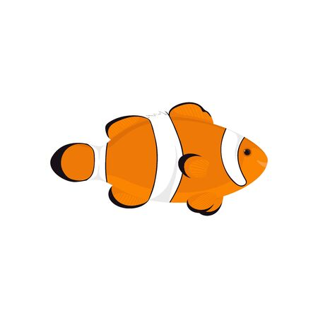 Cute cartoon clown fish illustration 向量圖像