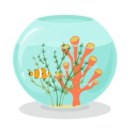 Aquarium with clown fish, coral and algae 向量圖像