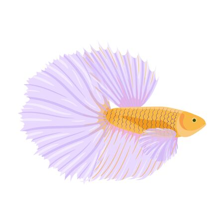 Fighting siamese fish vector illustration, isolated on white background. Cartoon betta or cockerel fish in flat style. Different layers. Vettoriali
