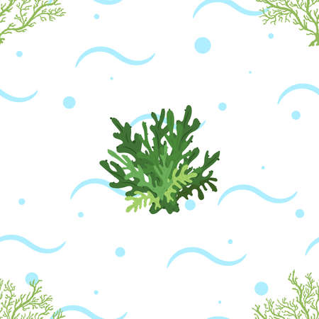 Seamless pattern with seaweeds on white background. Vector hand drawn illustration of underwater sea life.