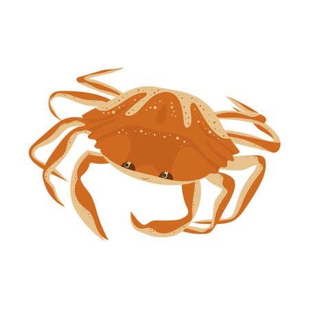 Crab cartoon illustration on white background.