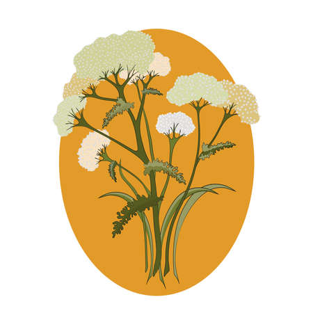 Medicinal plant illustration in flat style