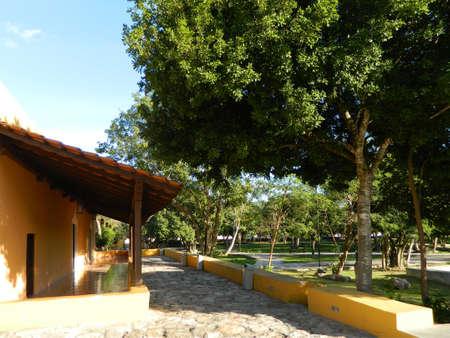 A clay tile roof in a nice hacienda garden