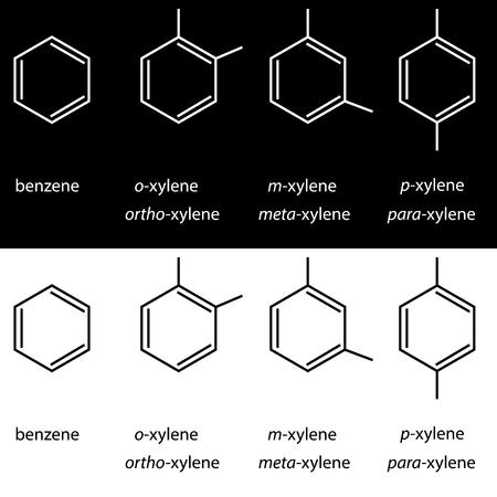 meta: Molecule benzene, xylene ortho meta para isomers. Vector Illustration