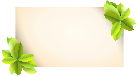 vintage card with green leaves - illustration Stock Illustration - 10994129