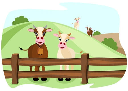 two cute cows on pasture in a wooden fence, with landscape in background Illustration