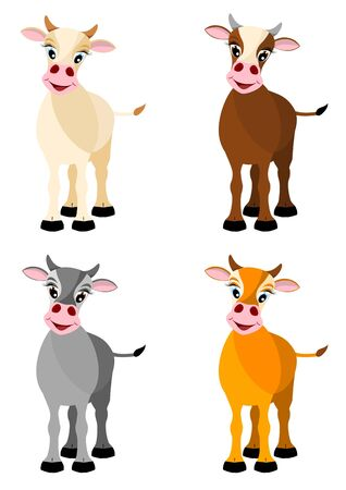bullock: beige, brown, gray and yellow cows isolated on white background
