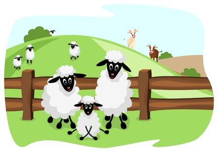 three white sheep on pasture with a wooden fence and landscape in background Stock Vector - 11084280