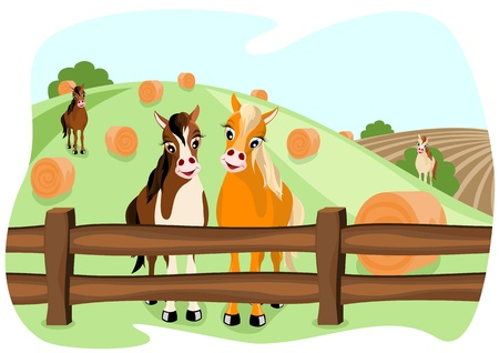 two cute horses on meadow in a wooden fence, with landscape in background