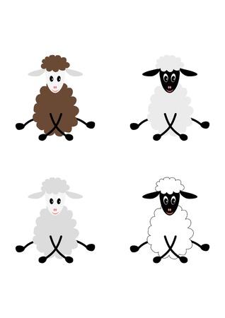 ovejita bebe: Ilustraci�n de cuatro linda ovejita corderos, aisladas sobre fondo blanco