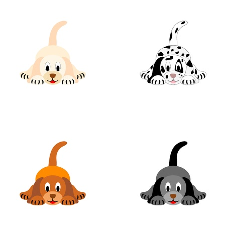 Four cute puppies - vector illustration