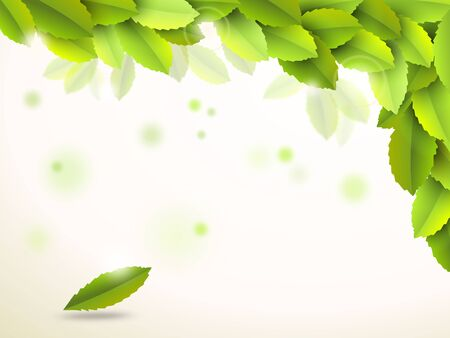 green leafs: Abstract background with green leafs - illustration Stock Photo