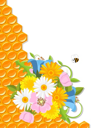 spring flowers, bee and honeycomb illustration